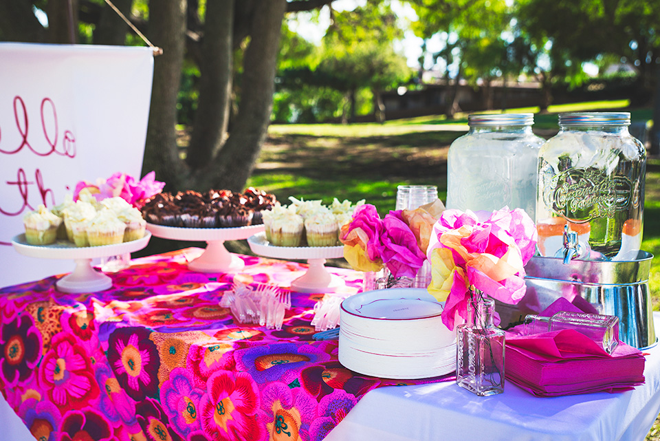Baby Shower in the Park – San Diego Event Photographer