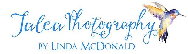 San Diego Wedding Photographer Jalea Photography