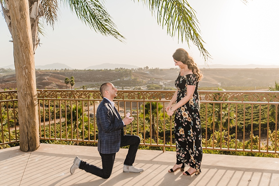 man proposing on one knee at carter estate winery temecula